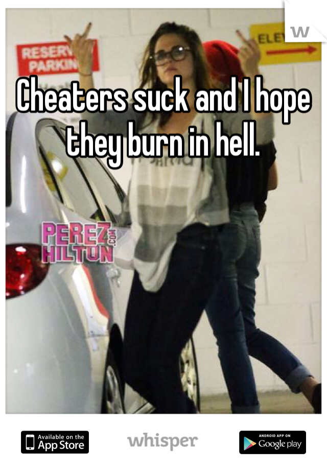Cheaters suck and I hope they burn in hell.