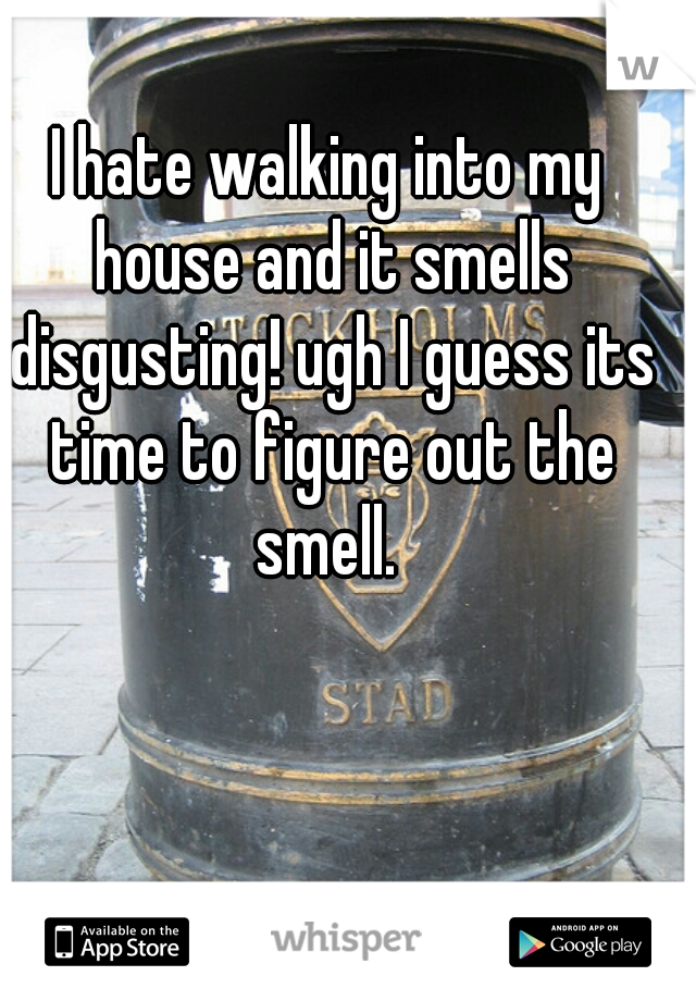 I hate walking into my house and it smells disgusting! ugh I guess its time to figure out the smell.