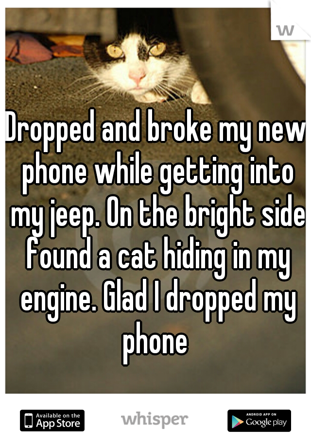 Dropped and broke my new phone while getting into my jeep. On the bright side found a cat hiding in my engine. Glad I dropped my phone
