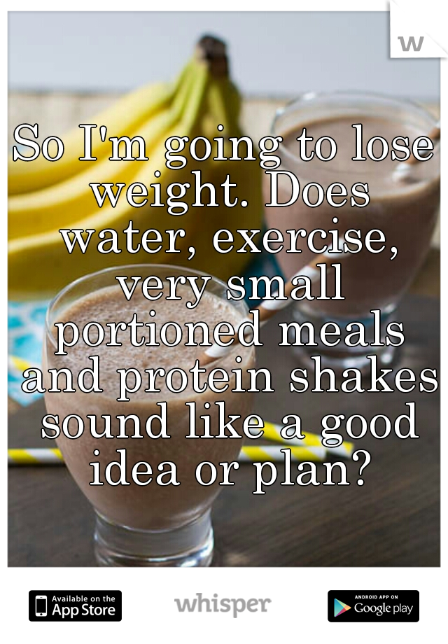 So I'm going to lose weight. Does water, exercise, very small portioned meals and protein shakes sound like a good idea or plan?