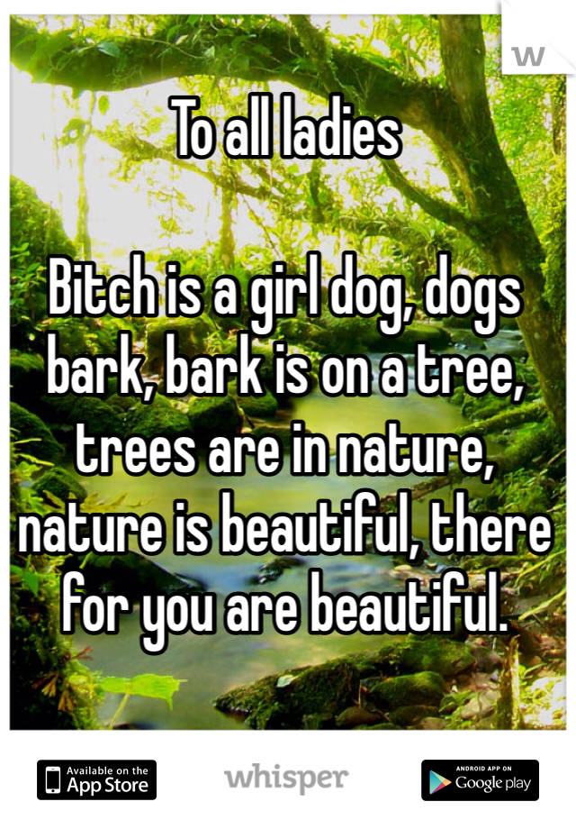 To all ladies  Bitch is a girl dog, dogs bark, bark is on a tree, trees are in nature, nature is beautiful, there for you are beautiful.