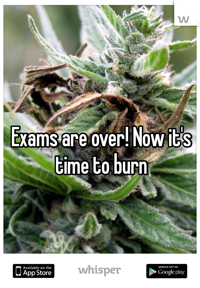 Exams are over! Now it's time to burn