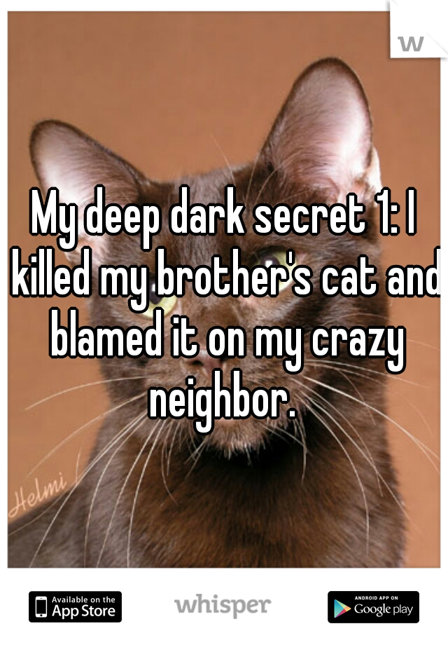 My deep dark secret 1: I killed my brother's cat and blamed it on my crazy neighbor.