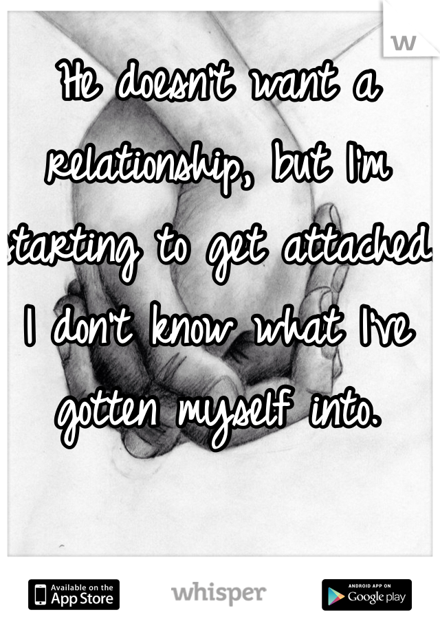 He doesn't want a relationship, but I'm starting to get attached. I don't know what I've gotten myself into.