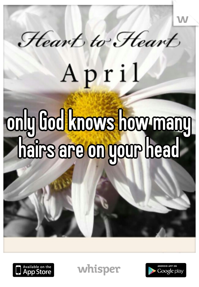 only God knows how many hairs are on your head