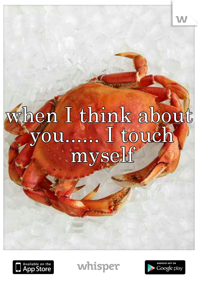 when I think about you...... I touch myself