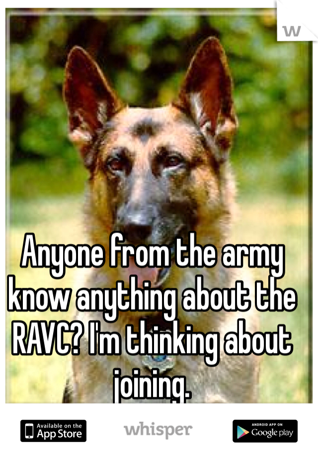 Anyone from the army know anything about the RAVC? I'm thinking about joining.