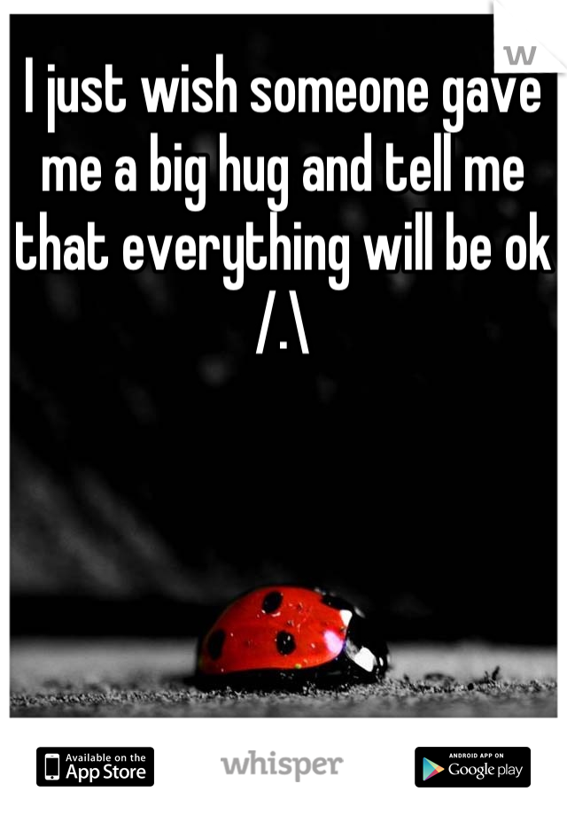I just wish someone gave me a big hug and tell me that everything will be ok /.\