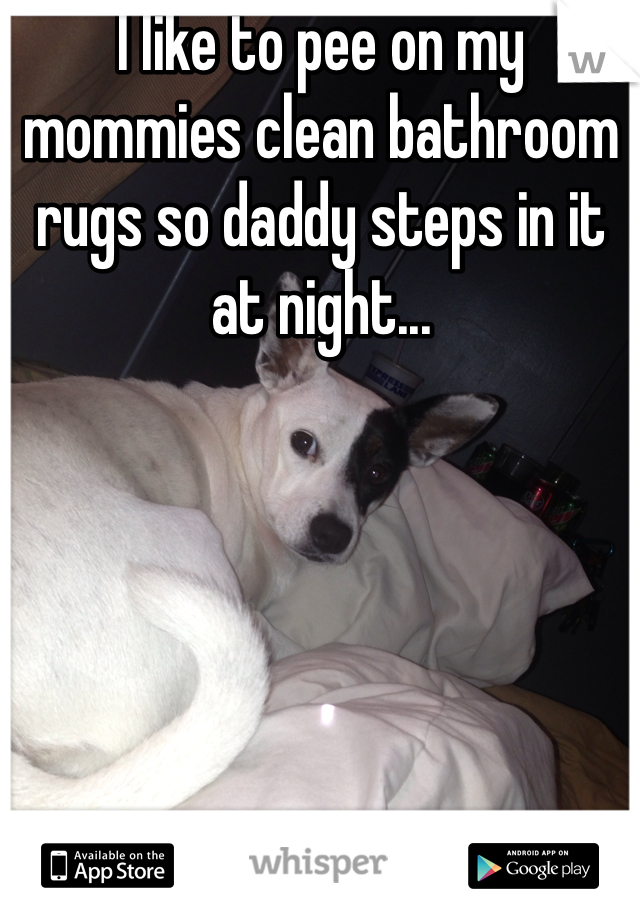 I like to pee on my mommies clean bathroom rugs so daddy steps in it  at night...