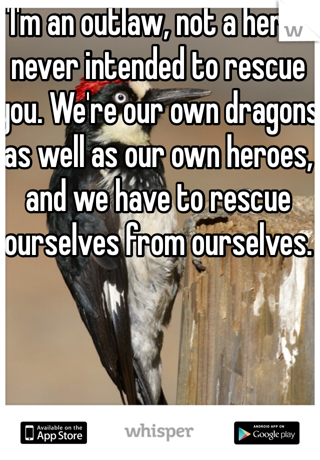 """""""I'm an outlaw, not a hero. I never intended to rescue you. We're our own dragons as well as our own heroes, and we have to rescue ourselves from ourselves."""