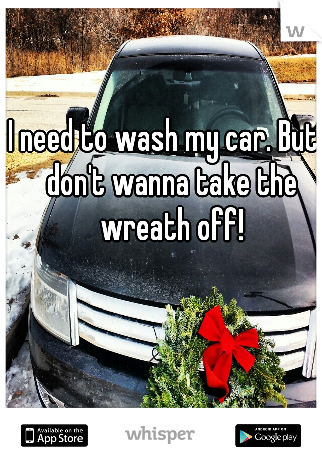 I need to wash my car. But I don't wanna take the wreath off!