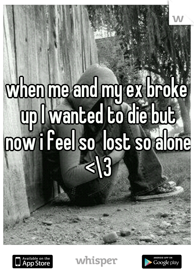 when me and my ex broke up I wanted to die but now i feel so  lost so alone <\3