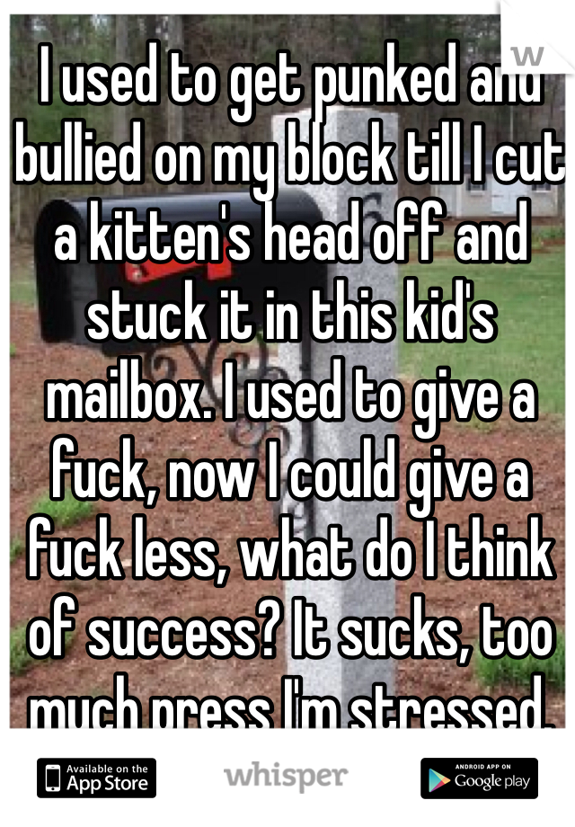 I used to get punked and bullied on my block till I cut a kitten's head off and stuck it in this kid's mailbox. I used to give a fuck, now I could give a fuck less, what do I think of success? It sucks, too much press I'm stressed.