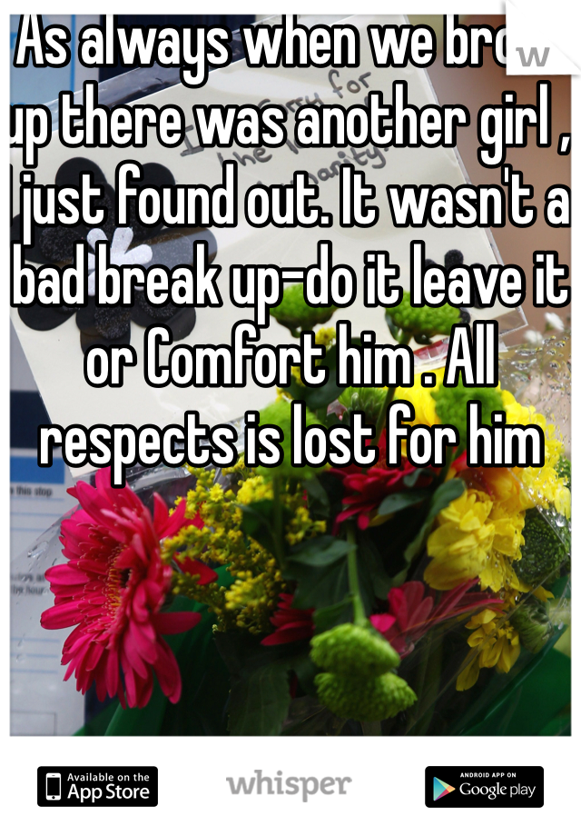 As always when we broke up there was another girl , I just found out. It wasn't a bad break up-do it leave it or Comfort him . All respects is lost for him