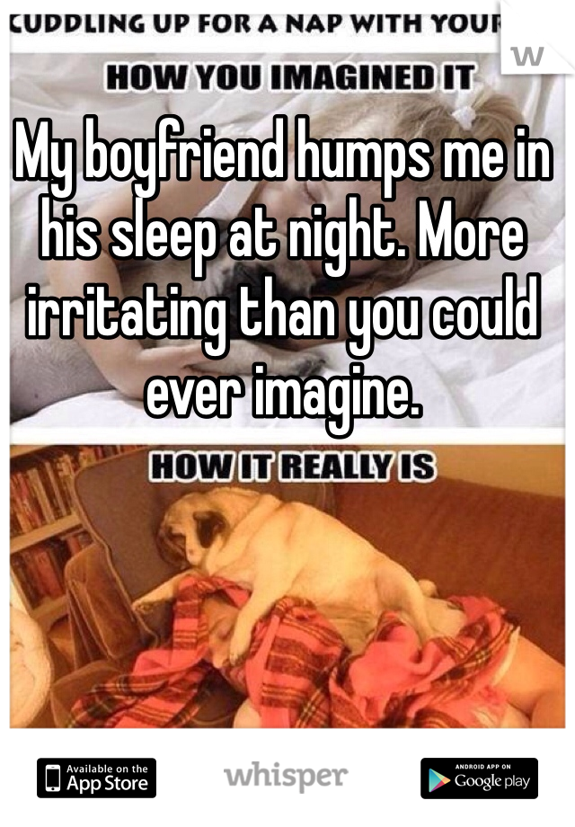 My boyfriend humps me in his sleep at night. More irritating than you could ever imagine.