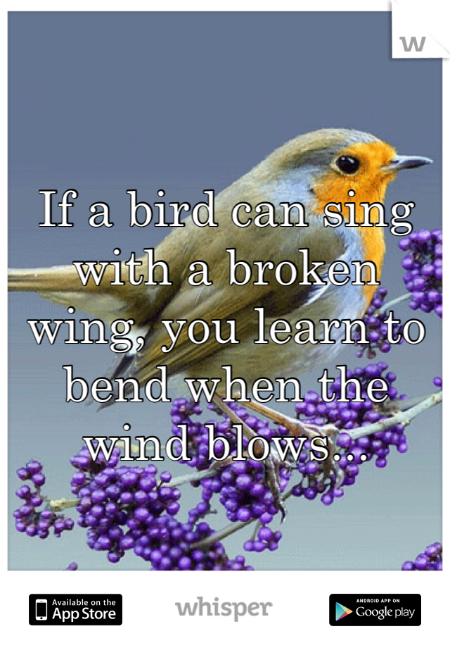 If a bird can sing with a broken wing, you learn to bend when the wind blows...