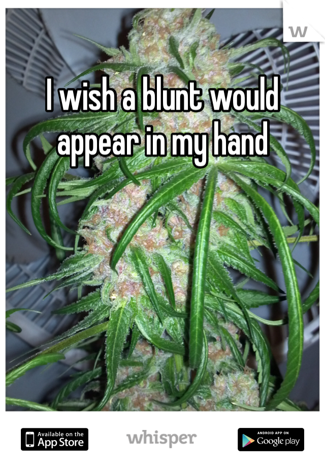 I wish a blunt would appear in my hand