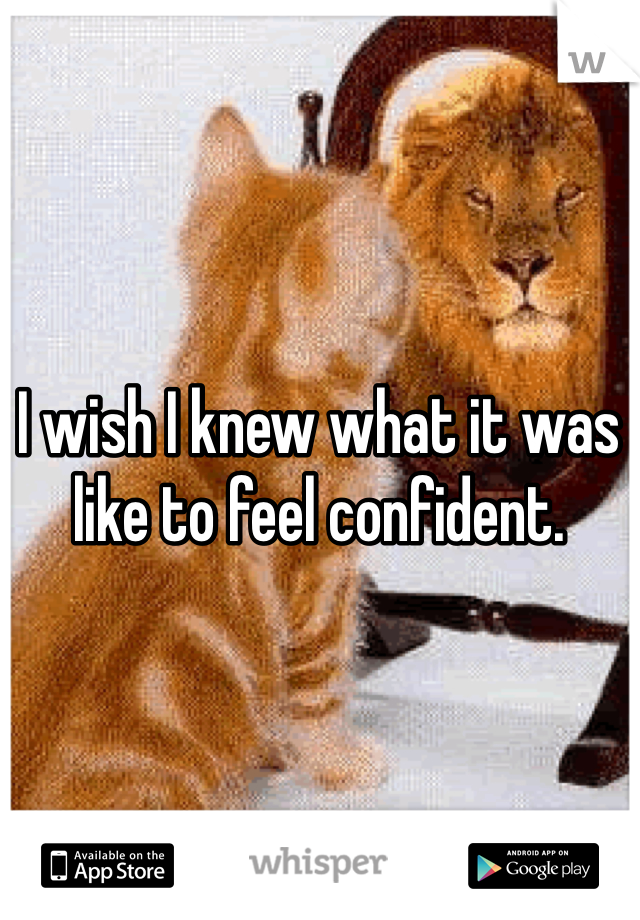 I wish I knew what it was like to feel confident.