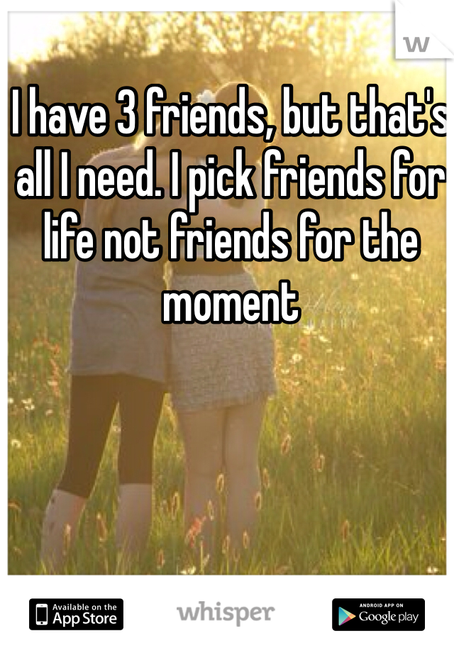 I have 3 friends, but that's all I need. I pick friends for life not friends for the moment