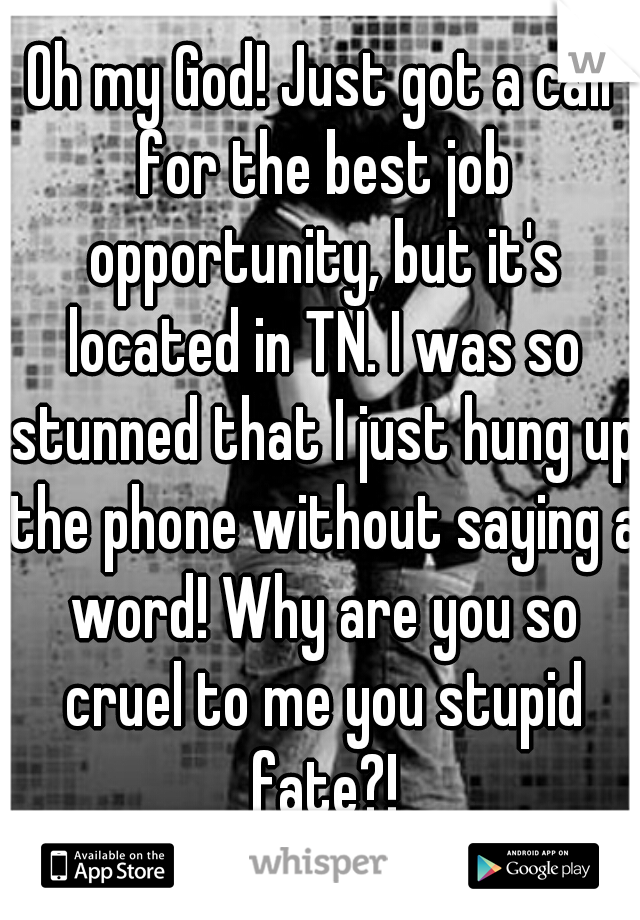 Oh my God! Just got a call for the best job opportunity, but it's located in TN. I was so stunned that I just hung up the phone without saying a word! Why are you so cruel to me you stupid fate?!