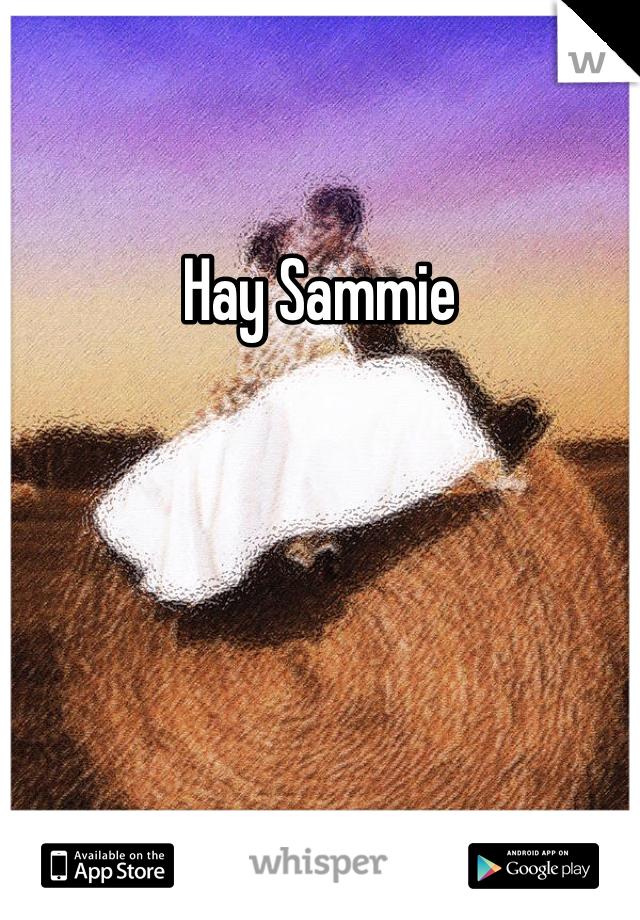 Hay Sammie