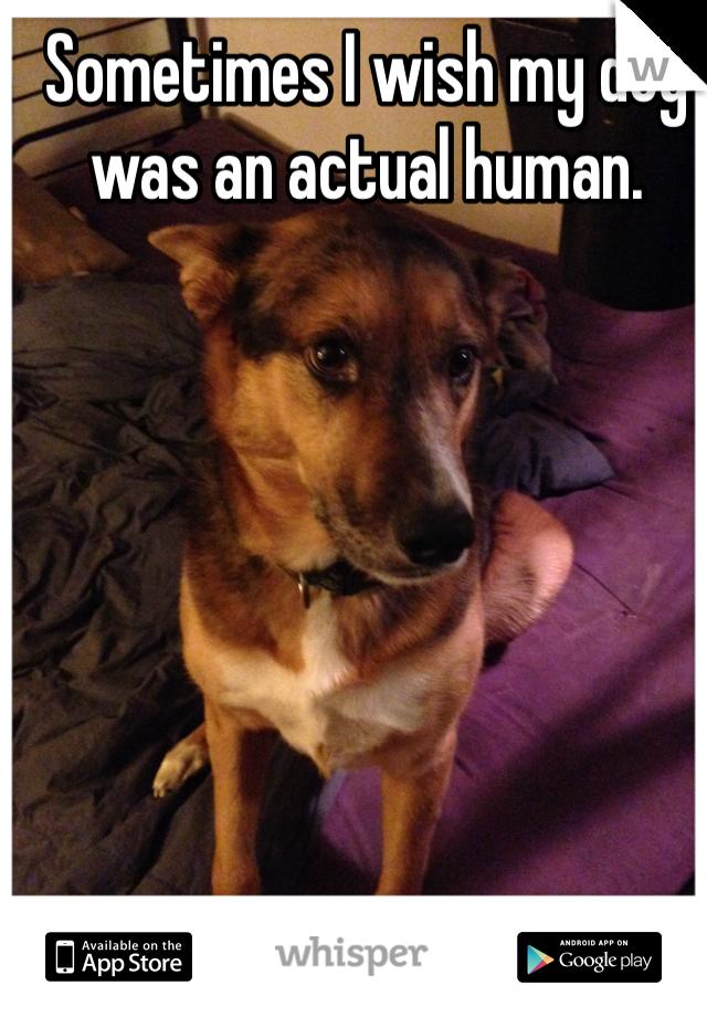 Sometimes I wish my dog was an actual human.