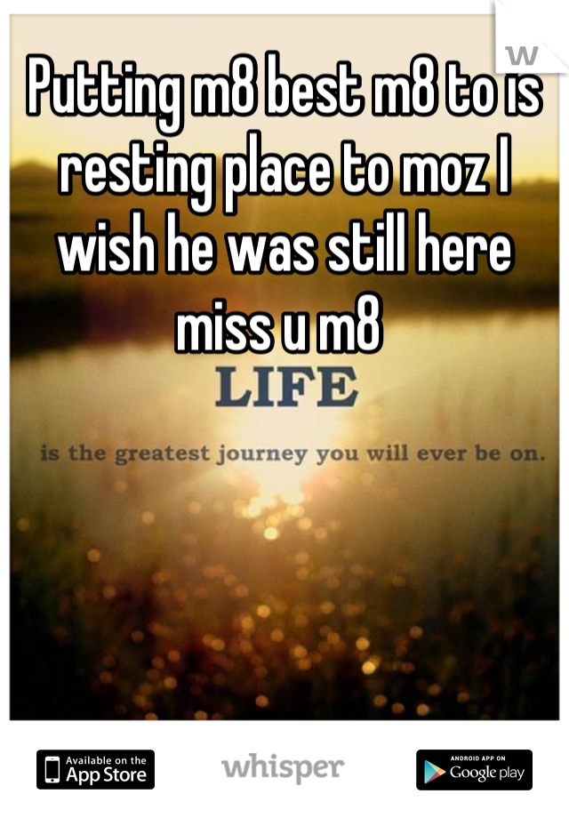 Putting m8 best m8 to is resting place to moz I wish he was still here miss u m8