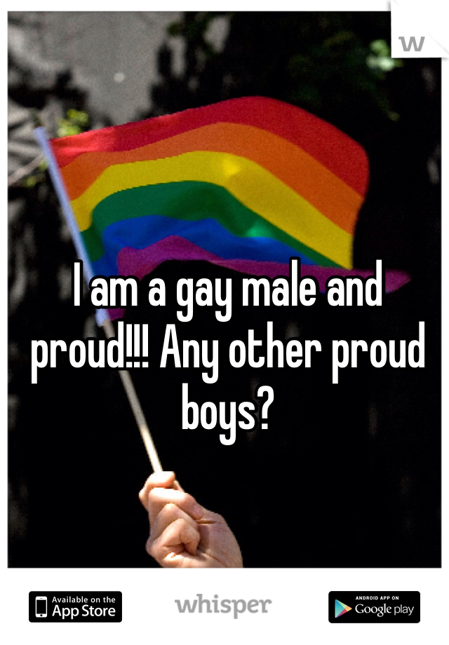 I am a gay male and proud!!! Any other proud boys?