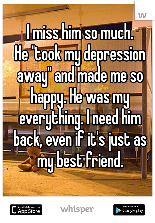 "I miss him so much.  He ""took my depression away"" and made me so happy. He was my everything. I need him back, even if it's just as my best friend."