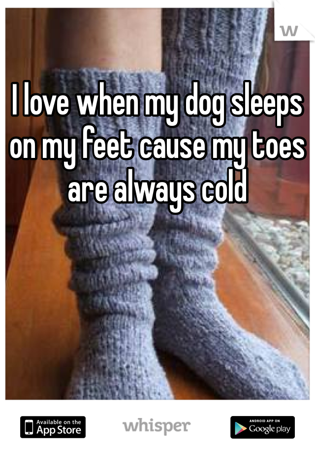 I love when my dog sleeps on my feet cause my toes are always cold