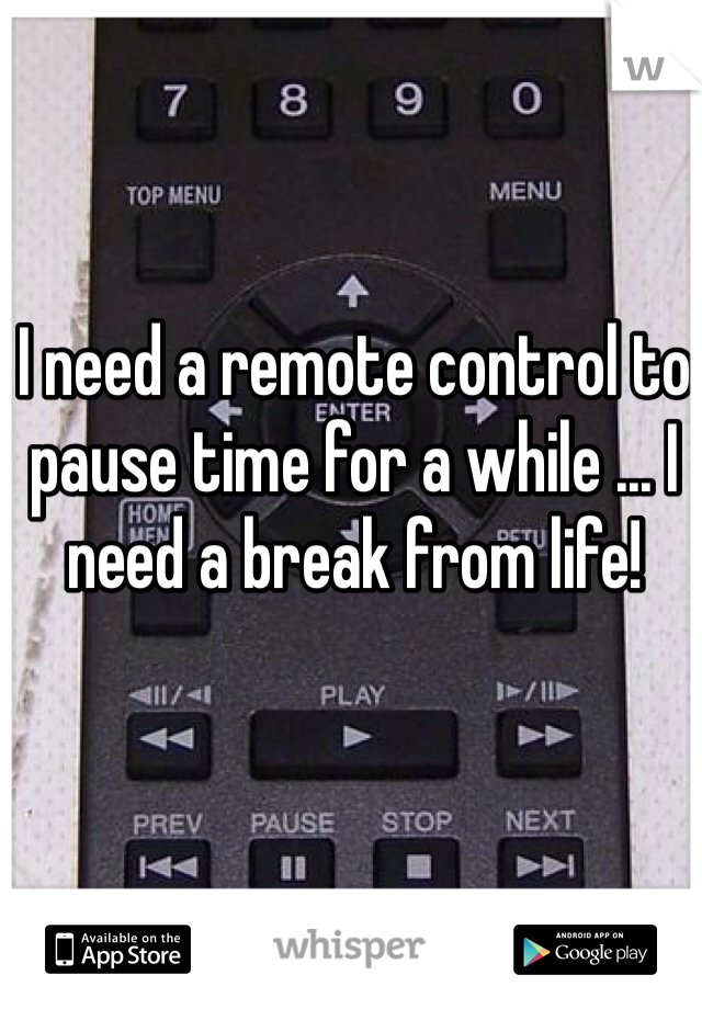 I need a remote control to pause time for a while ... I need a break from life!