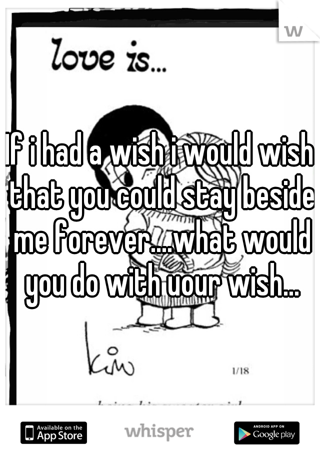 If i had a wish i would wish that you could stay beside me forever....what would you do with uour wish...