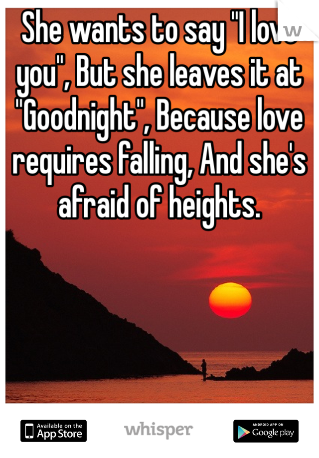 "She wants to say ""I love you"", But she leaves it at ""Goodnight"", Because love requires falling, And she's afraid of heights."