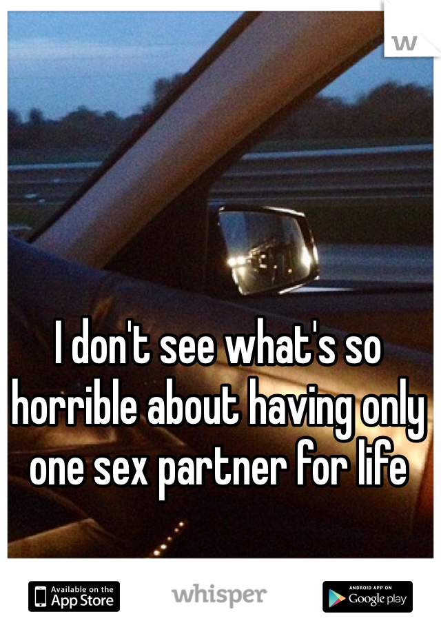 I don't see what's so horrible about having only one sex partner for life