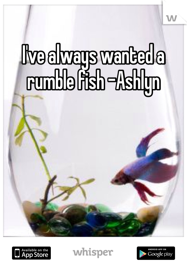 I've always wanted a rumble fish -Ashlyn