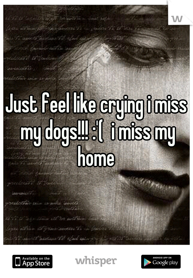 Just feel like crying i miss my dogs!!! :'(  i miss my home