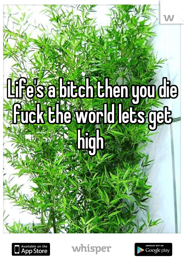Life's a bitch then you die fuck the world lets get high