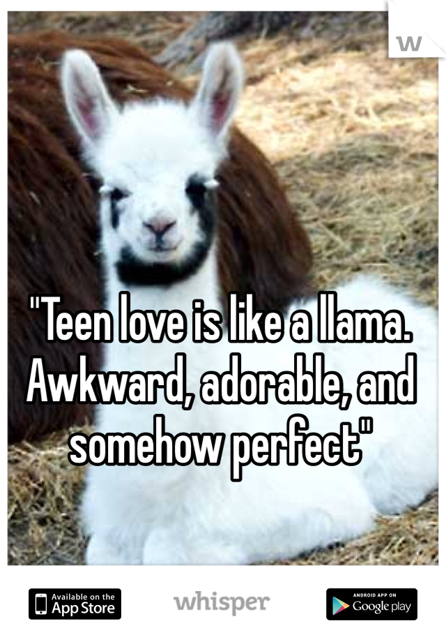 """Teen love is like a llama. Awkward, adorable, and somehow perfect"""