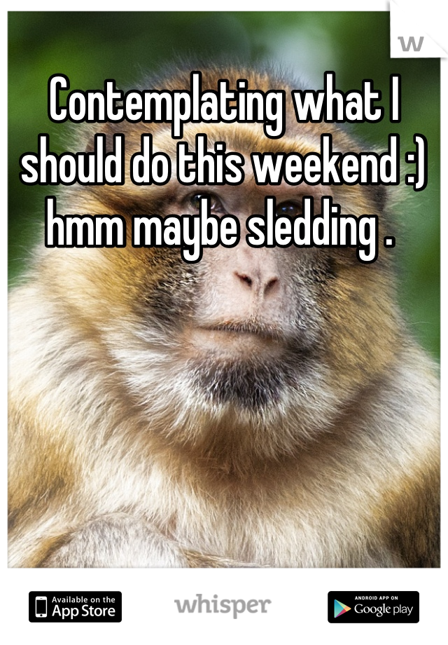 Contemplating what I should do this weekend :) hmm maybe sledding .