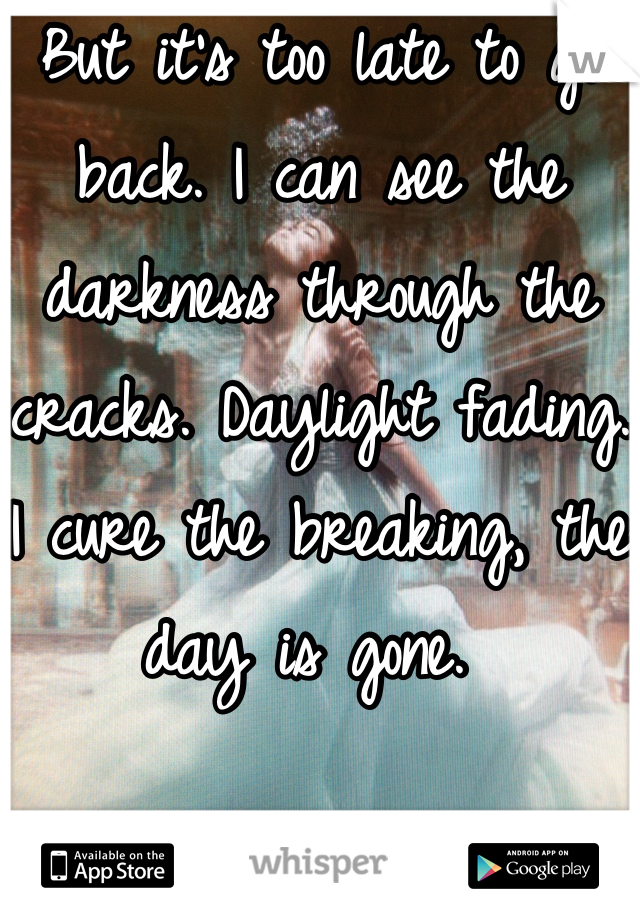 But it's too late to go back. I can see the darkness through the cracks. Daylight fading. I cure the breaking, the day is gone.