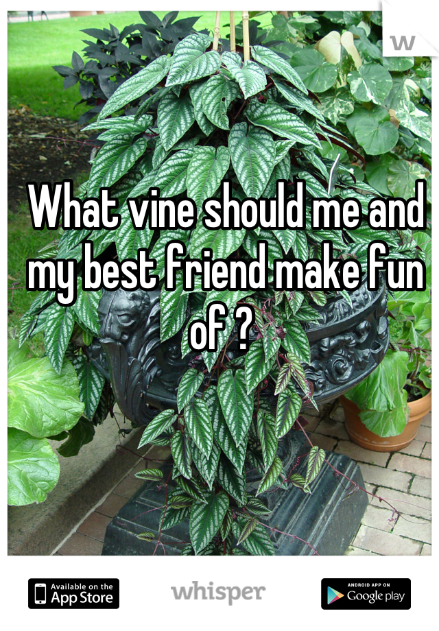 What vine should me and my best friend make fun of ?