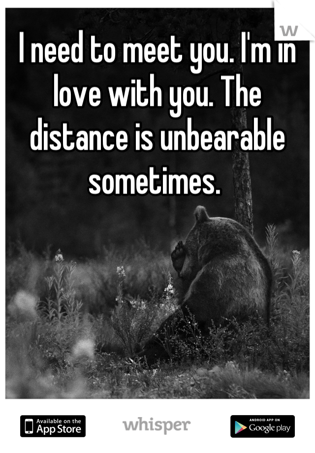 I need to meet you. I'm in love with you. The distance is unbearable sometimes.