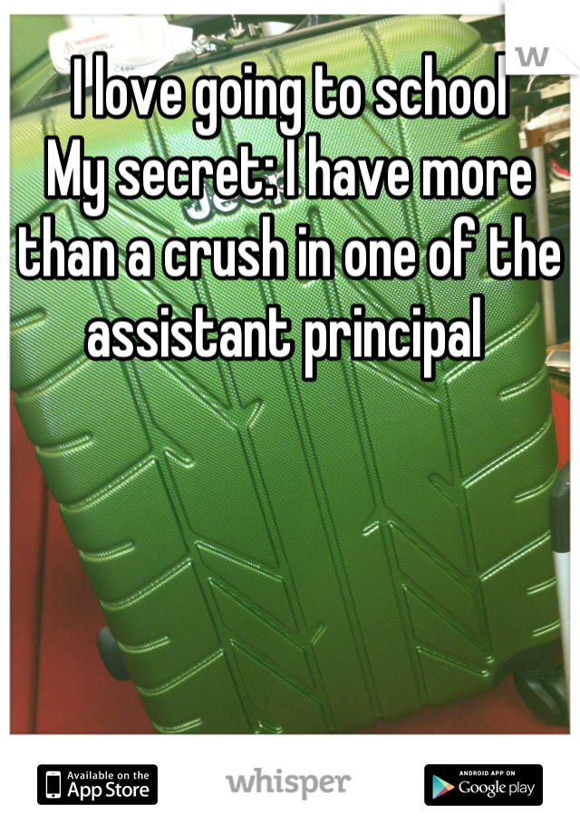 I love going to school  My secret: I have more than a crush in one of the assistant principal