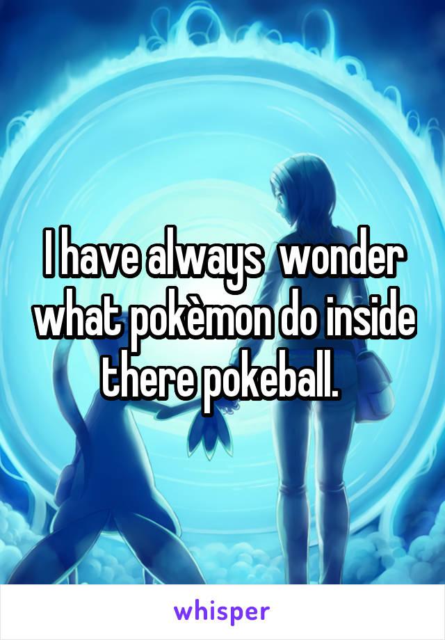 I have always  wonder what pokèmon do inside there pokeball.
