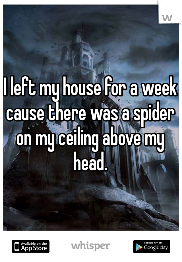 I left my house for a week cause there was a spider on my ceiling above my head.