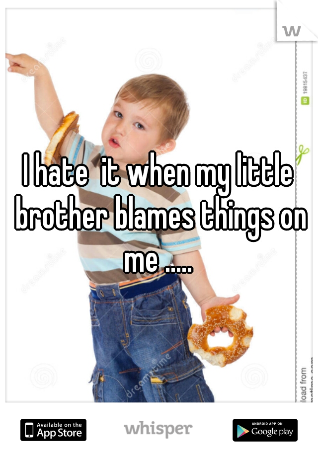 I hate  it when my little brother blames things on me .....