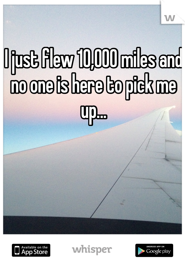 I just flew 10,000 miles and no one is here to pick me up...