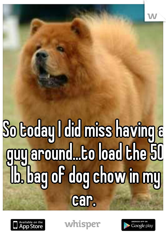So today I did miss having a guy around...to load the 50 lb. bag of dog chow in my car.