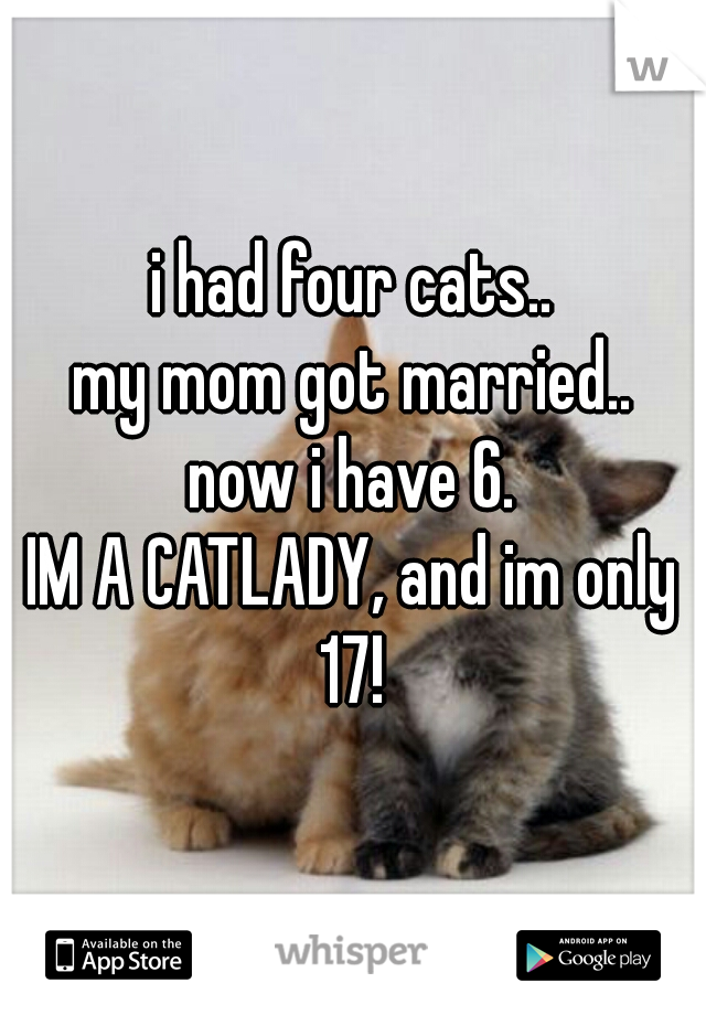 i had four cats.. my mom got married.. now i have 6. IM A CATLADY, and im only 17!