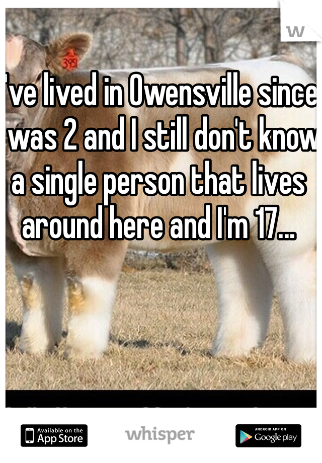 I've lived in Owensville since I was 2 and I still don't know a single person that lives around here and I'm 17...